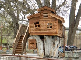 Parkfield tree house