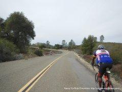 climb up Vineyard Canyon Rd