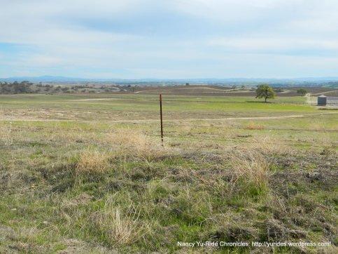 open plains-vineyards