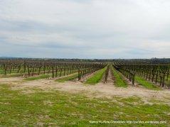 Estrella Rd wine trail