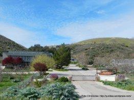 Mt Olive Organic Farm