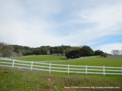 ranches-green pastures
