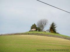 rural ranch