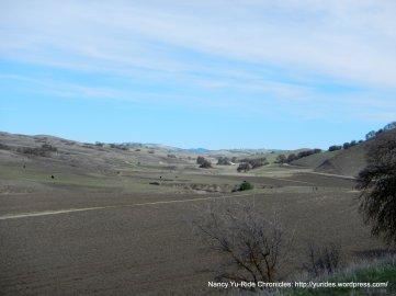 beautiful open valley
