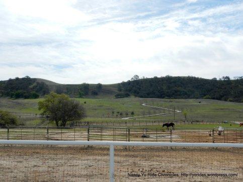 horse facilities