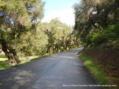 Tepusquet Rd-Ruiz Canyon