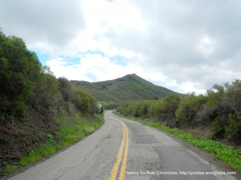 Cat Canyon Rd