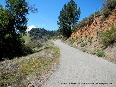 Figueroa Mountain Rd climb