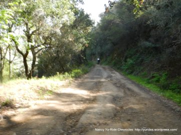 rough dirt road-huge cracks