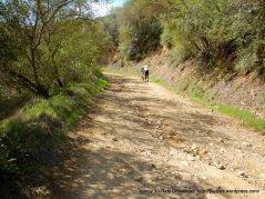 rough rocky dirt road