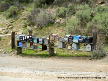 community mail boxes