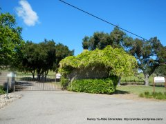 Zaca Mesa Vineyards