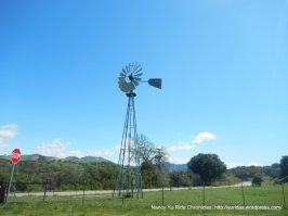 Foxen Canyon windmill