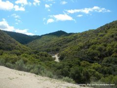 Drum Canyon landscape