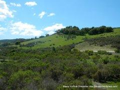 Purisima Hills