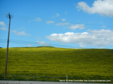soft green yellow hills