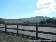 horsetraining facility