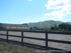 horsetraining facility