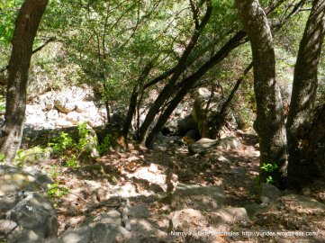 Chumash Painted Cave-State Historical Park