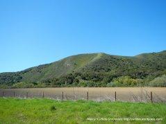 Lompoc Hills