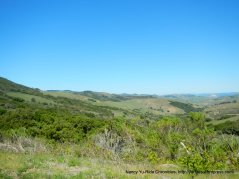 Lompoc Hills-valley views