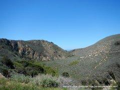 hillside landscape