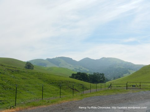lower foothills