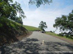 1000' elevation-to Burma Trail