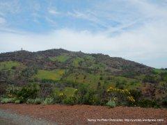 flourishing slopes