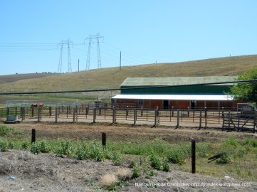 horse ranch-Grant Line