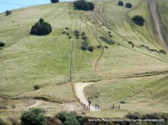 Carnegie Ridge