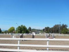 equestrian jump training arena