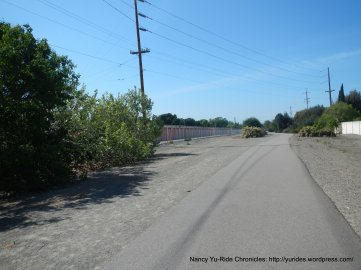 Iron Horse Trail from Pleasanton