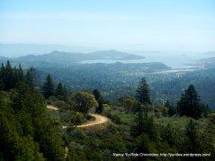 Marin/SF views
