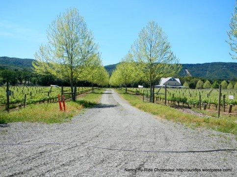 winery/vineyard