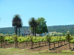 winery/vineyards