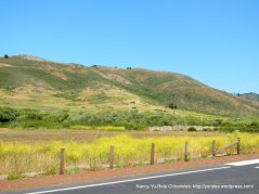 GGNRA landscape