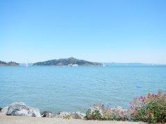 Sf Bay views-Sausalito