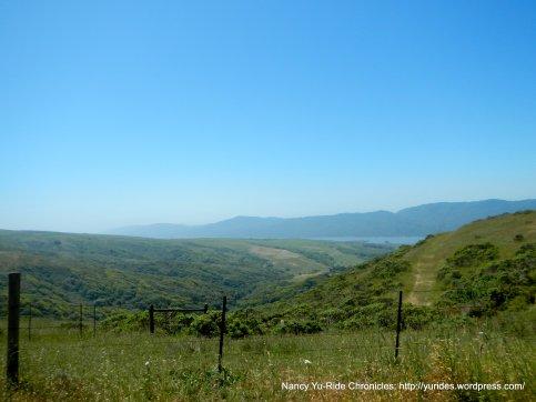 Tomales Bay views