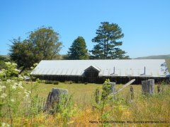 cattle ranch barn