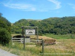 Blck Mountain Ranch