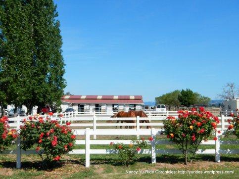 horse ranch-Big Ranch Rd