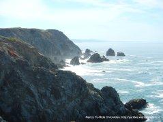 rocky shoreline-Bodega Head