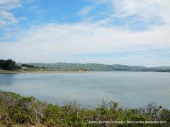 Bodega Bay
