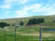 Chanslor Ranch