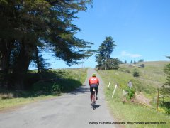 Coleman Valley-ridge line