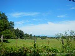 hilltop meadows