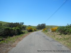 Bay Hill ridge line
