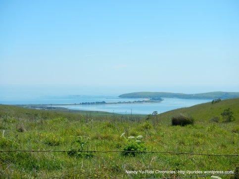 view of Bodega Bay