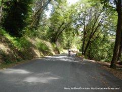 Kings Ridge-climb avg 8.5%